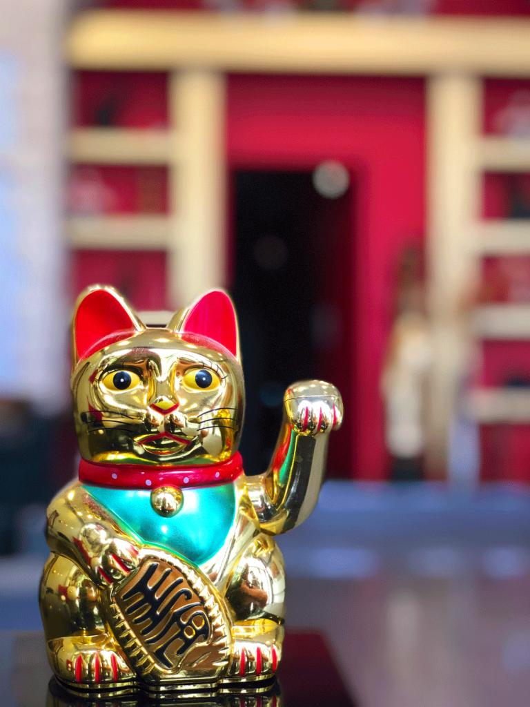 Chat japonais avec main qui bouge