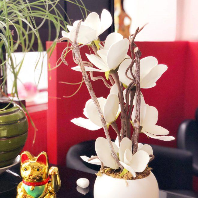 ASIA massage Fleur