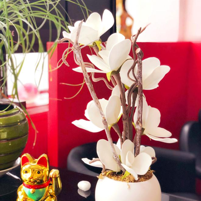 ASIA-massage-Fleur